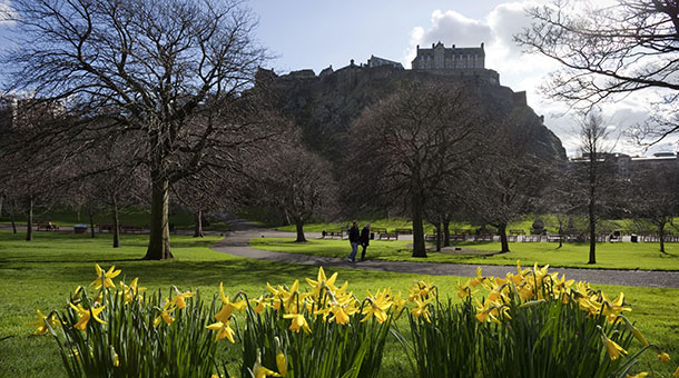 Daffodils in West Princes Street Gardens, with the castle visible behind, Edinburgh. Picture Credit : Paul Tomkins / VisitScotland / Scottish Viewpoint  Tel: +44 (0) 131 622 7174  E-Mail : info@scottishviewpoint.com  Web: www.scottishviewpoint.com This photograph cannot be used without prior permission from Scottish Viewpoint.